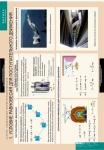 Статика. Специальная теория относительности