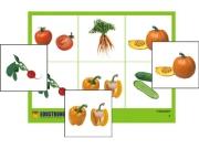 """Лото """"Овощи"""" (4 планшета, 24 карт., цвет., ламинир.)"""