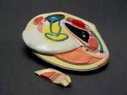 Модель беззубка (двустворчатый моллюск)