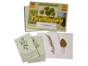 """Гербарий """"Лекарственные растения"""" (22 вида, с иллюстрациями)"""