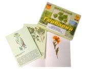 """Гербарий """"Систематика растений. Семейство Пасленовые. Крестоцветные. Сложноцветные"""" (раздаточный)"""