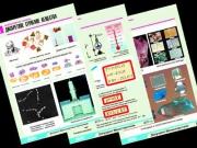 """Комплект таблиц по физике """"Молекулярная физика"""" (10 табл.,формат А1, ламинир.)"""