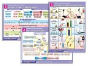 """Комплект таблиц по орг. химии """"Реакции органических веществ"""" (6 табл., формат А1, лам.)"""