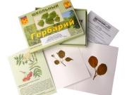 """Гербарий """"Систематика растений. Семейство Розоцветные"""" (раздаточный)"""