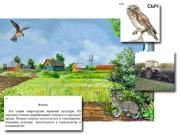 """Магнитный плакат-аппликация """"Поле: биоразнообразие и взаимосвязи в сообществе"""""""