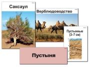 """Модель-аппликация """"Природные зоны России"""" (ламинированная)"""