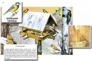 """Магнитный плакат-аппликация """"Биоразнообразие и экологические группы. Птицы зимой"""""""