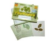 """Гербарий """"Дикорастущие растения"""" (30 видов, с иллюстрациями)"""