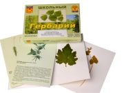 """Гербарий """"Систематика растений. Высшие споровые и семенные"""" (раздаточный)"""