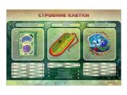 """Электрифицированный стенд """"Строение клетки"""" с маркерными полями"""
