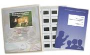 Слайд-комплект «Животноводство. Породы сельскохозяйственных животных»