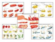"""Плакаты ПРОФТЕХ """"Первичная обраб. продуктов и приготовление полуфабрикатов"""" (15 пл, винил, 70х100)"""