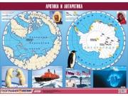 """Таблица демонстрационная """"Арктика и Антарктика"""" (винил 100х140)"""