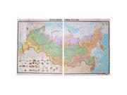 """Учебная карта """"Природные зоны России"""" (матовое, 2-стороннее лам.)"""