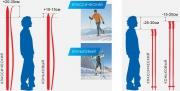 """Лыжные палки стеклопластик""""SWIFT""""  (120 -155) в ассортименте  (120,125,130,135,140,145,150,155 см)"""